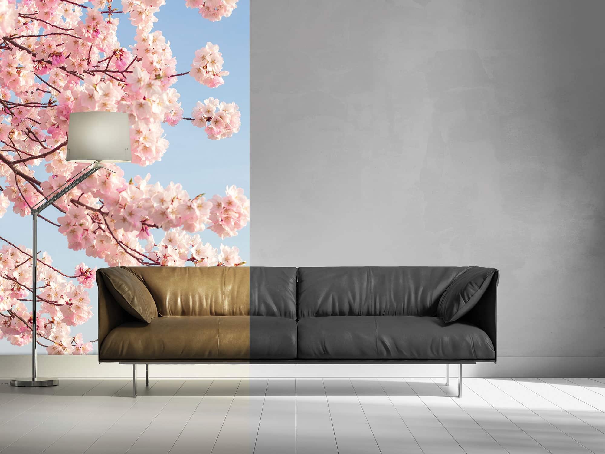 Eurodecor über SIHL: Moderne Gestaltung im Showroom